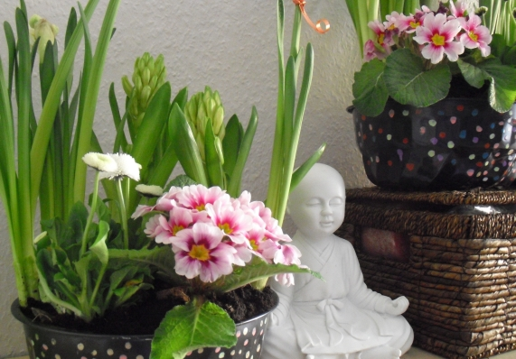 Blumenschalen2